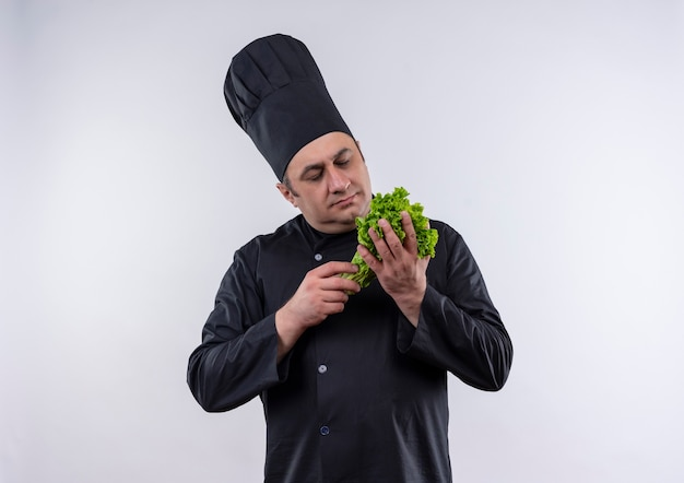Thinking middle-aged male cook in chef uniform looking at salad in his hand