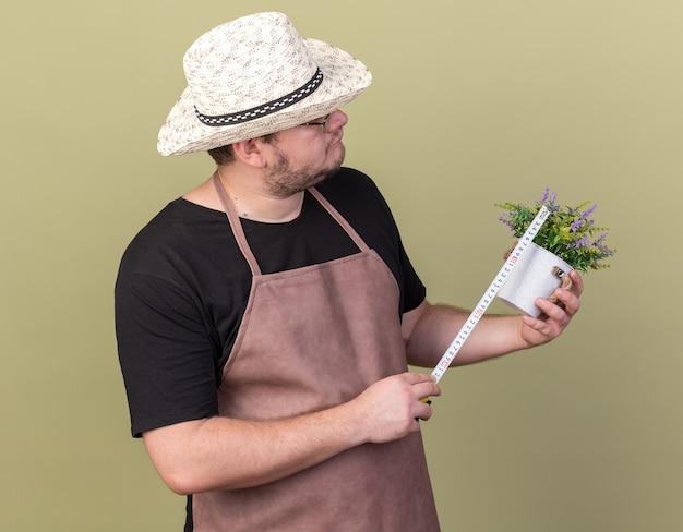 Думающий молодой мужчина-садовник в садовой шляпе измеряет цветок в цветочном горшке с рулеткой, изолированной на оливково-зеленой стене