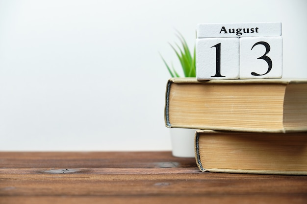 Концепция календаря месяца тринадцатый день на деревянных блоках с копией пространства