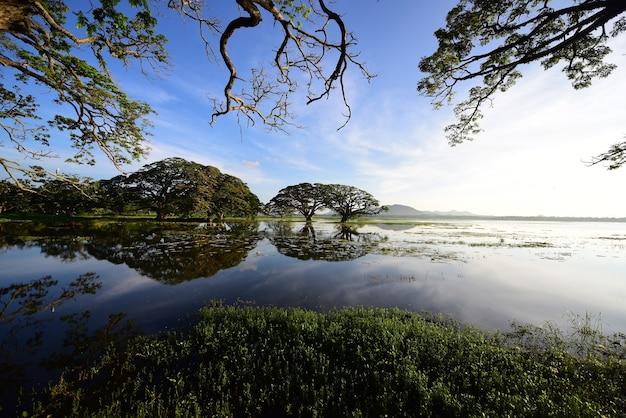 Thissamaharamaya lake in sri lanka