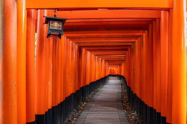 Тысяча красных ворот тории вдоль прохода в храме фусими инари тайша является важной синтоистской святыней и расположена в киото японии.