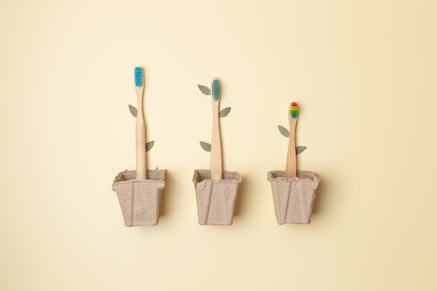 Three bamboo toothbrushes in pot with leaves on light, association with trees, plastic free. high quality photo
