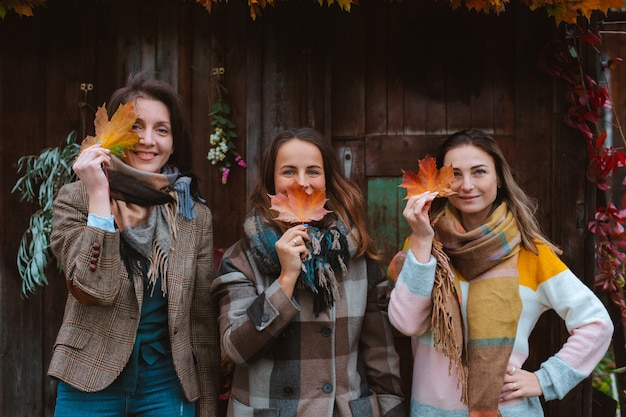 노란 가을 잎으로 얼굴을 덮고 있는 세 명의 아름다운 젊은 여성이 오래된 나무 배경에 웃고 있습니다. 가을 패션 시즌.