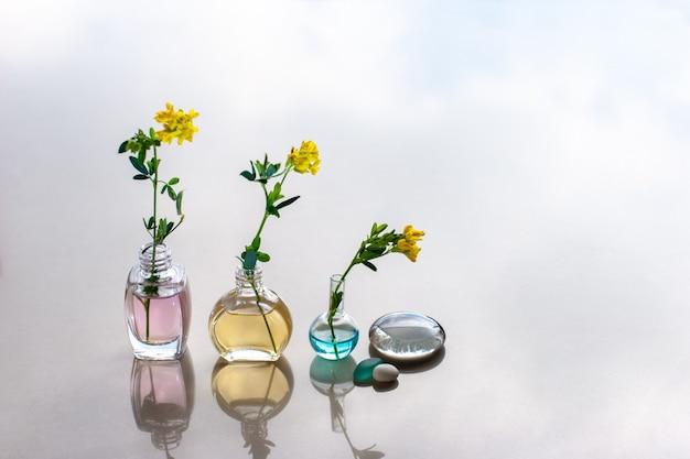 Три бутылки ароматических масел разной высоты стоят в ряд с разными по цвету маслами. в бутылку воткнули цветы. размышления на заднем плане. выборочный фокус. место для текста.