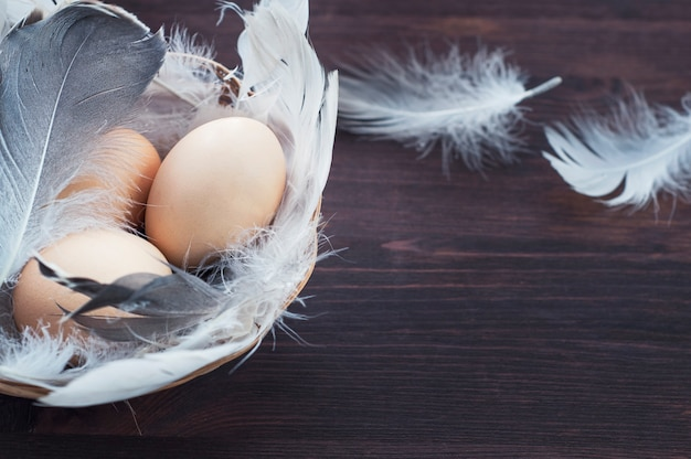 Three chicken eggs in a basket with feathers