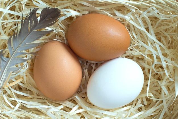 Three chicken eggs in the straw