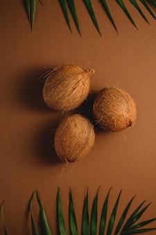 活気に満ちた茶色の無地の背景、トロピカルコンセプト、トップビューでヤシの葉を持つ3つのココナッツフルーツ