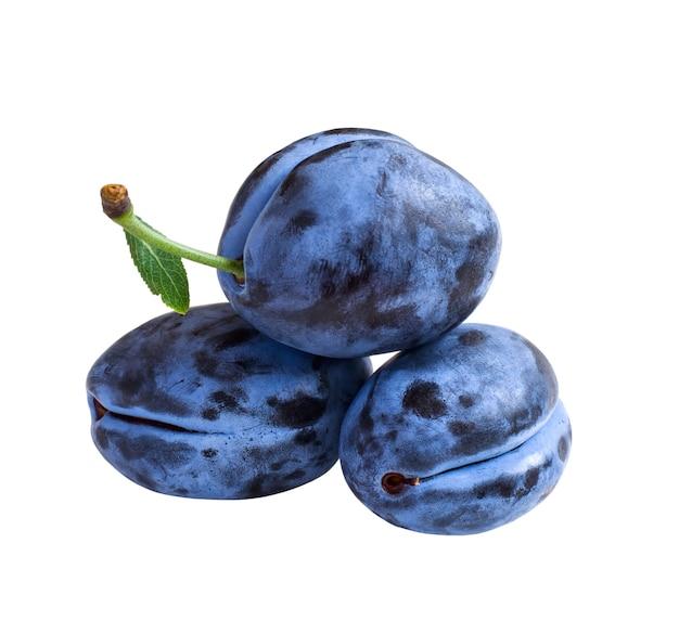 흰색 배경에 고립 된 세 개의 진한 파란색 자두