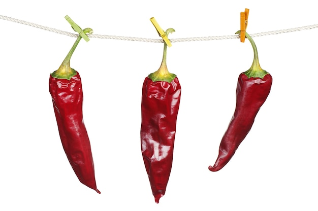 Three dry red chili peppers hanging on a rope isolated on white background