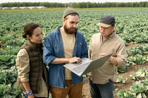 Three farmers discussing online data or watching video