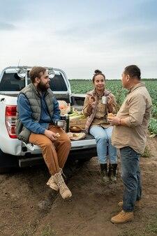Трое фермеров обедают на багажнике автомобиля на фоне капустного поля