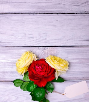 Three flowering roses and a white paper tag