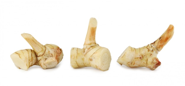 Three fresh and clean galangal isolated