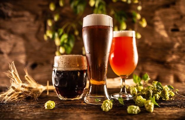 Три бокала с разливным пивом, темно-красный, перед деревянной бочкой. украшение ячменных колосьев и свежего хмеля.
