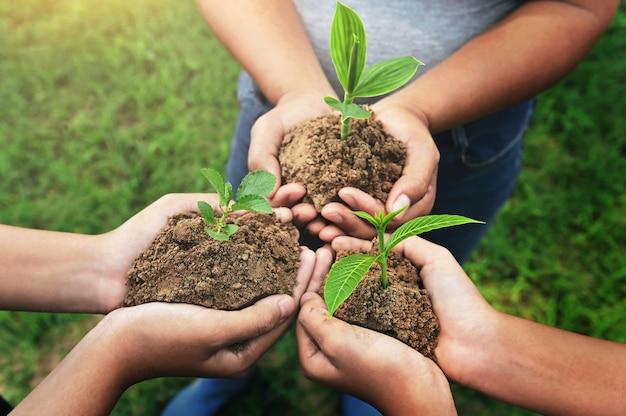 若い植物と立っているグループを持っている3つの手。環境コンセプトの育成