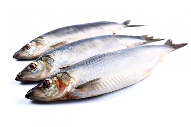 Three herring fish on a white isolated  (isolated). close up