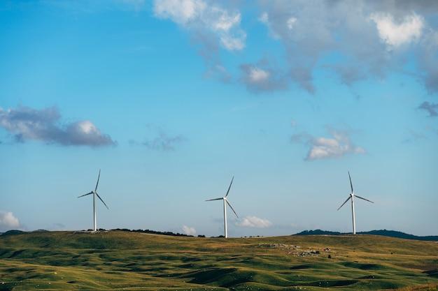 푸른 하늘에 대 한 필드에 3 개의 높은 바람 터빈