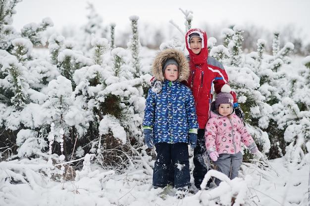 雪と降雪と妖精の冬の日の3人の子供の肖像画。