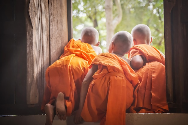 Three novices are looking out the window.