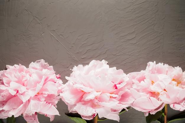 フレームの下の行の灰色の背景に3つのピンクの牡丹