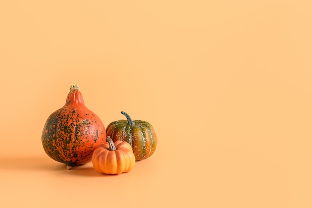 Three pumpkins on orange background. thanksgiving day or halloween mock up. copy space.