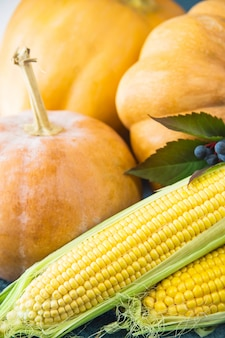 Three raw pumpkins and two corn cobs with blue autumn berries and leaves