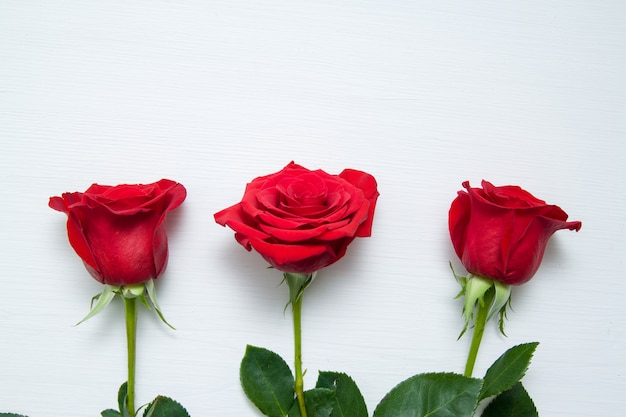 Three red roses on white wooden background