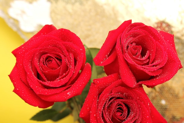 Three red roses with water drops on them