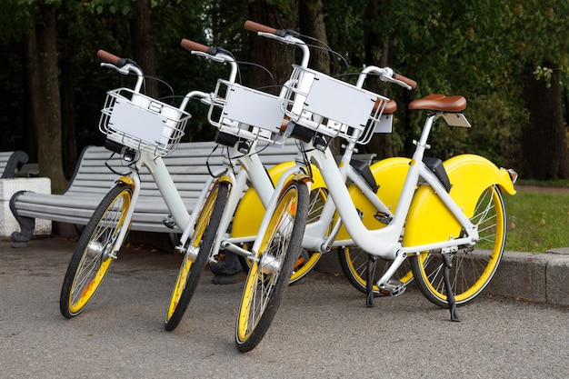 Three rental bicycles in a park.
