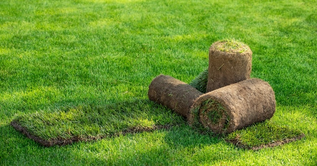 Three rolls of lawn grass in the backyard on a sunny day. ready grass for laying, landscaping near the cottage.