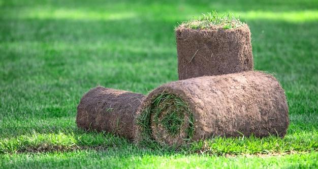Три рулона газонной травы на заднем дворе в солнечный день. готовая трава для укладки, озеленение возле дачи.