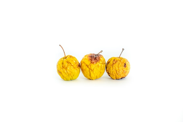 Three rotten spoiled apples on a white background yellow rotten apples on a white background