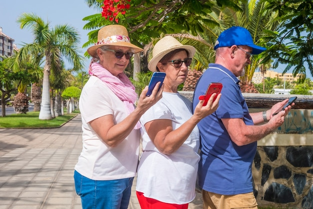Three senior people standing together in public park with palm trees looking at the smart phone
