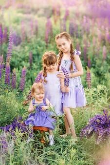 Три сестры в природе. дети на лугу с цветами