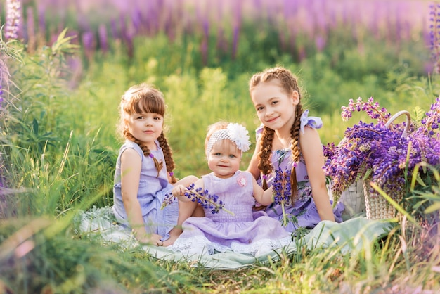 Three sisters in nature. children in the meadow with flowers