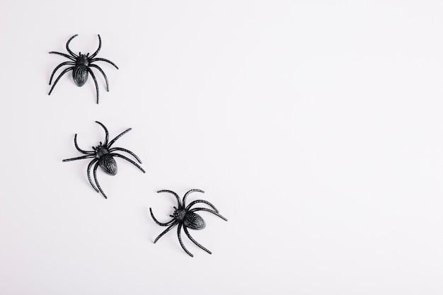白い背景に横たわる3つのクモ