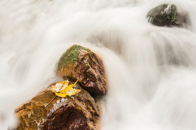 Three stones on flowing waterfall with single autumn leaf