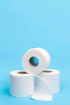 Three toilet paper rolls with copy space