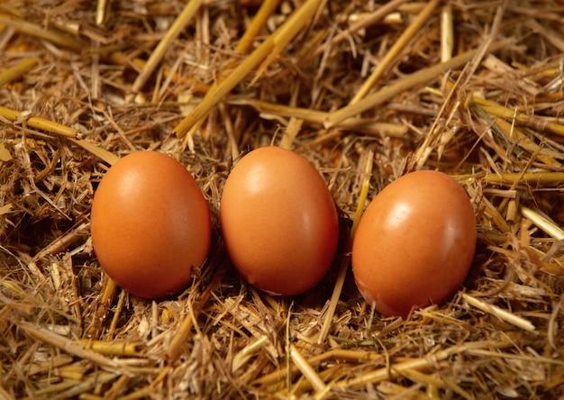 Three village eggs on straw. side view