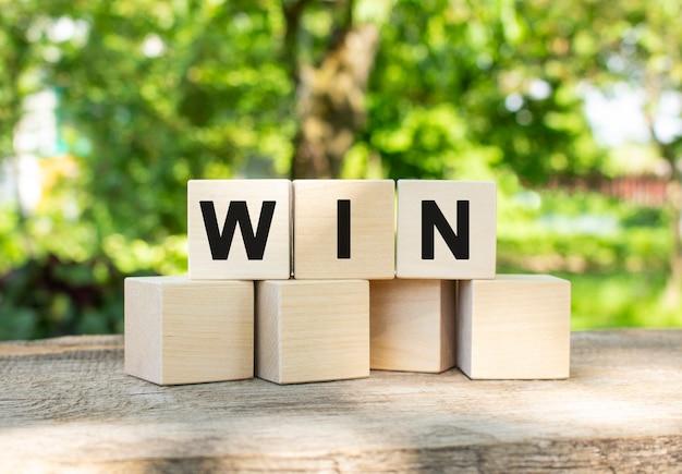 Win 단어에는 세 개의 나무 큐브가 쌓여 있습니다. 그들은 여름 정원을 배경으로 다른 큐브에 누워 있습니다.