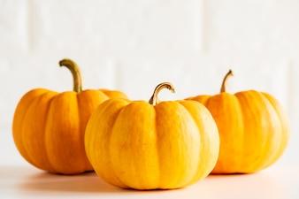 Three yellow pumpkin on white brick block background. halloween concept.