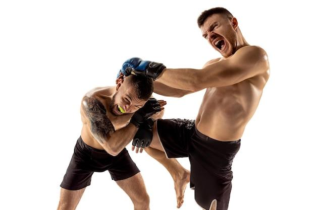 痛みを通して。白いスタジオの背景に孤立してポーズをとる2人のプロの戦闘機。健康な筋肉質の白人アスリートまたはボクサーのカップルが戦っています。スポーツ、競争、人間の感情の概念。