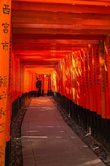 Throusand torii, храм фусима инари