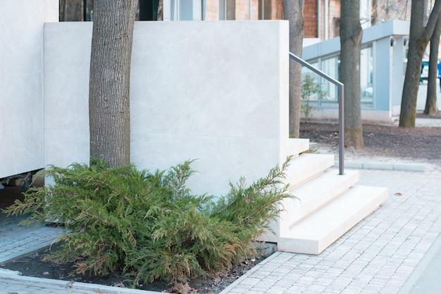 건물 장식 도시의 흰색 계단 근처 도시 거리에 thuja 나무 성장