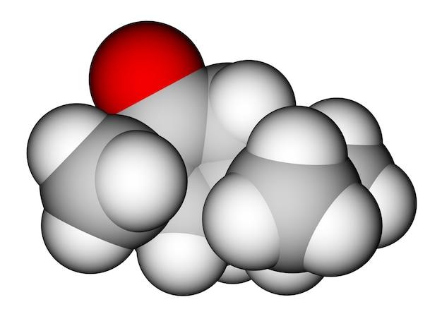 압생트의 멘톨 냄새 성분을 포함하는 투존 화합물