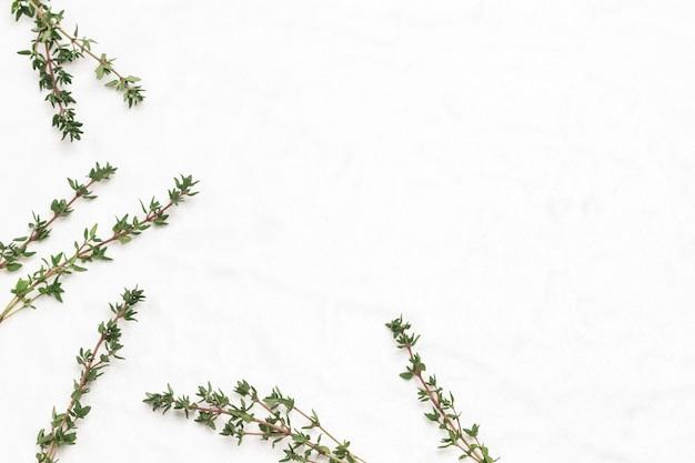 흰색 바탕에 백리향 sprigs입니다. 플랫 레이