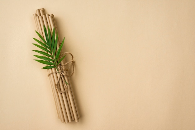 Tied bamboo organic straws and leaves copy space
