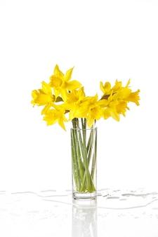 반사와 물 밝아진 유리에 흰색, 여름 꽃에 고립 된 묶인 된 수 선화