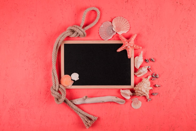 Tied rope; seashells; wood with blank blackboard on coral textured background