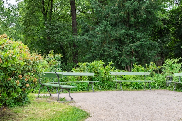 The tiergarten, walk through the green beautiful park in central berlin, benches for rest